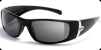 Smith Shelter Sunglasses (Spring 2009)