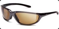 Smith Threshold Sunglasses (Spring 2009)